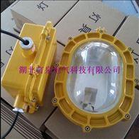 PD-GB6001防爆泛光灯|隔爆型|工厂灯|