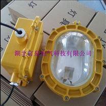 PD-GB6001防爆泛光灯 隔爆型 工厂灯 