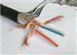高標準計算機通訊電纜NH-DJYVP3鋁箔