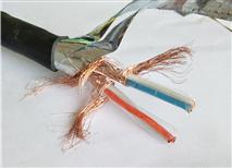 高标准计算机通讯电缆NH-DJYVP3铝箔