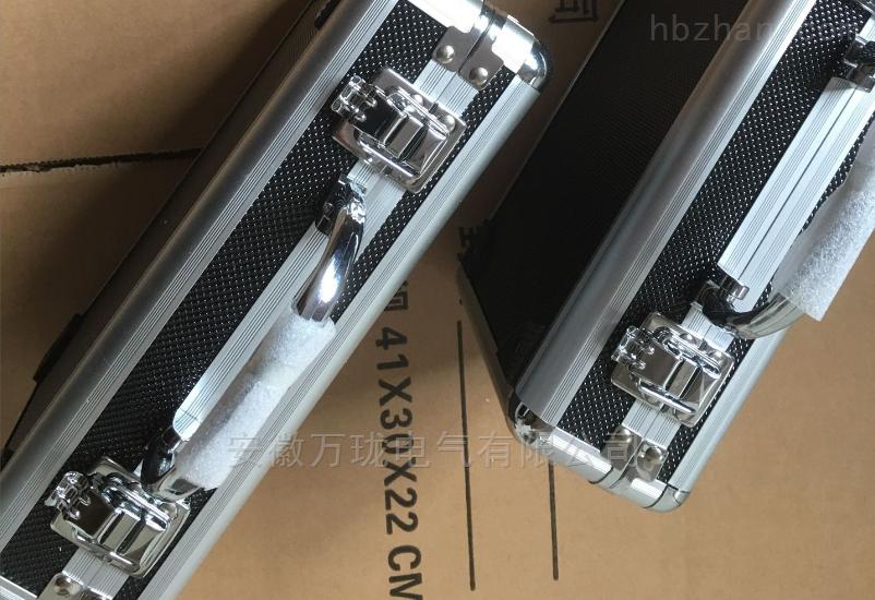 振動顯示儀GS6400E-D-02-00-02