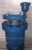 GWPGWP复合式排气阀.