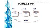 埃博拉病毒PCR检测试剂盒供应商