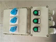 BXMDBXMD51-4/25K40防爆配电箱