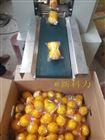 双胞胎柠檬花袋包装机