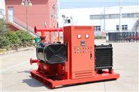 立式柴油机消防泵