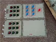 带漏电保护防爆配电箱