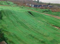 优质盖土防尘网供应厂家