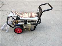 DL1515德国德利气动防爆高压清洗机