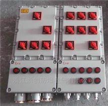BXD51防爆动力配电箱(带漏电保护)