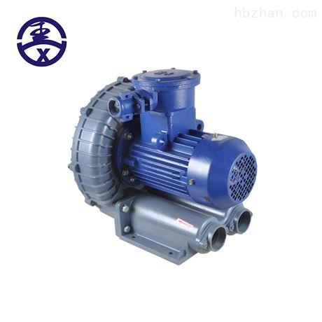 石油天然气输送防爆漩涡气泵