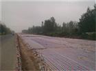 北京建筑工地彩条布常用规格