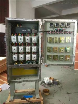 BXM51防爆照明配电箱8回路总开带漏电IP65