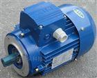 MS100L2-4三相异步电机/3KW中研紫光电机