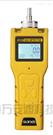 便攜式一氧化碳檢測報警儀