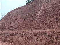 边坡绿化土壤团粒剂