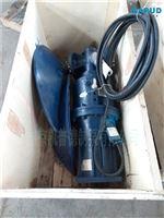 固、液均质液下推流器QJB5.5/4-1400/2-62P