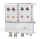 BXD52定制非标防爆配电箱防腐动力控制箱