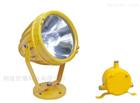BTC8210红河州壁挂式防爆灯 垃圾发电厂投光灯
