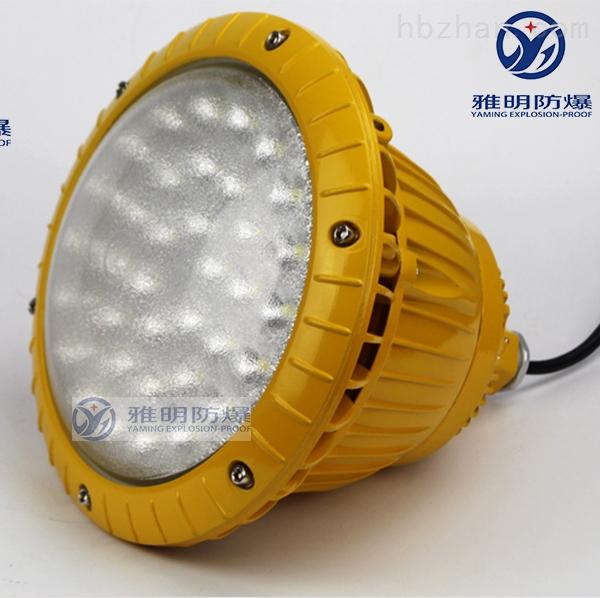 SW7151防爆LED灯 LED防爆泛光灯80W