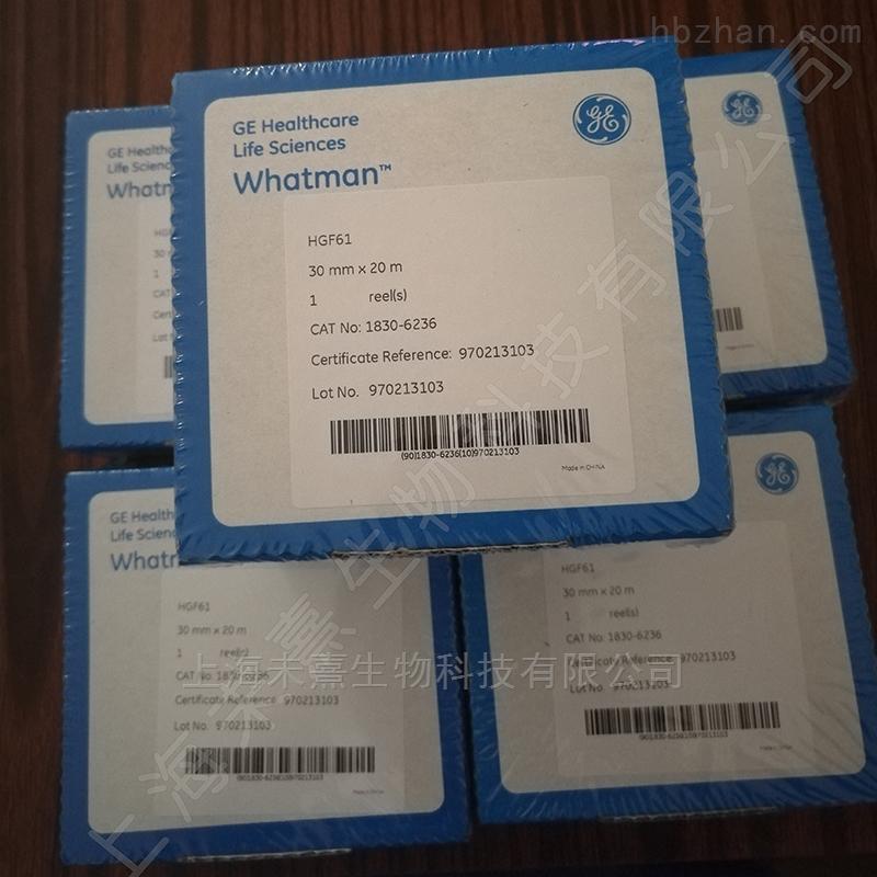 GE WHATMAN HGF61玻璃纤维纸带PM2.5滤纸带