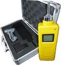 泵吸式测氧测爆仪