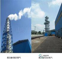 明晟雷竞技官网手机版下载燃煤电厂白色烟羽治理方案