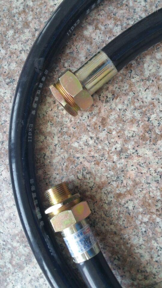 BNG防爆挠性软管