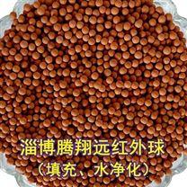 远红外陶瓷球淄博腾翔花洒水机中用活化球