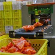 KL-350X冰糖橙自动包装机