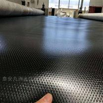 聚乙烯防水板工程应用