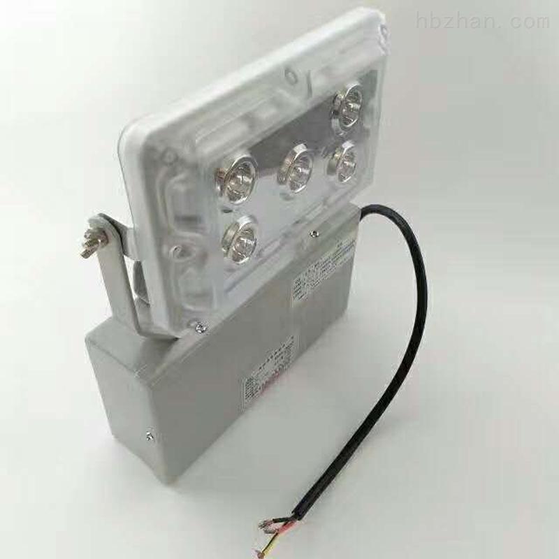 ZY8810LED应急照明灯厂房仓库应急泛光灯