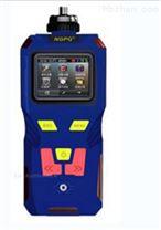气体检测仪 型号:GP19-NGP40-M400