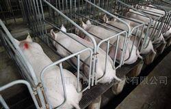FGL-清远养猪场全自动车辆消毒通道设备厂家