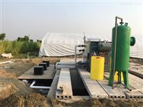新农村生活污水处理设备工厂