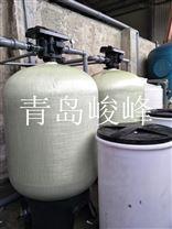 青岛软化水设备-锅炉除垢-全自动40T