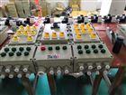 BXX51-2防爆动力检修箱,户内外使用
