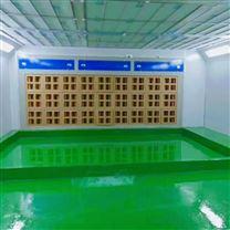 郴州纸箱式漆雾净化干式喷漆柜