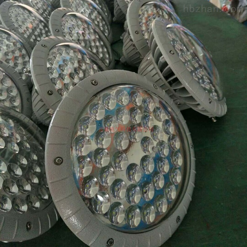 BZD118免维护节能防爆灯防潮防腐泛光平台灯