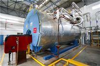 每小时产4吨蒸汽生物质热水锅炉