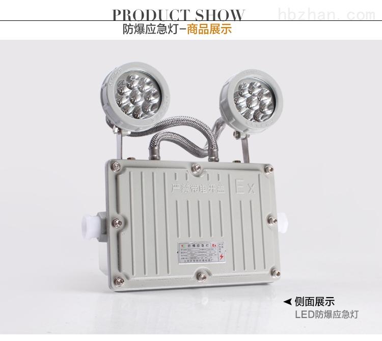 防爆双头应急灯GCD803-YJ带蓄电池LED照明灯