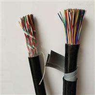 HYA23 2*2*0.6通信电缆