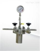 光化学不锈钢反应器