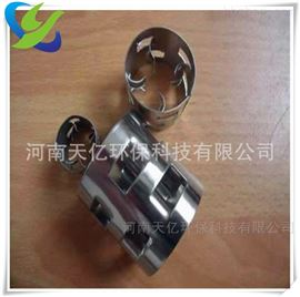TY-38BRH厂家供应304不锈钢增强型鲍尔环填料