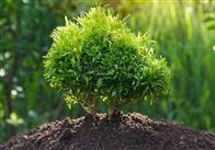 建设用地土壤检测