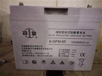 双登蓄电池12-100AH  铅酸免维护直流电瓶