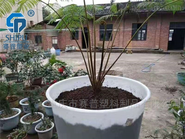 厂家直销M型圆桶腌制桶 发酵桶泡菜桶