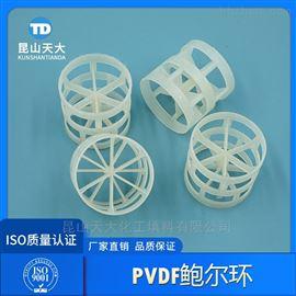 酸轧酸雾净化塔填料PVDF塑料鲍尔环