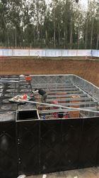 BDF地埋式箱泵一体化含义