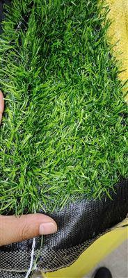 天津人造草坪围挡 屋顶草坪厂家